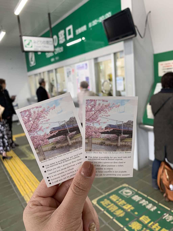 train-to-kawazu1