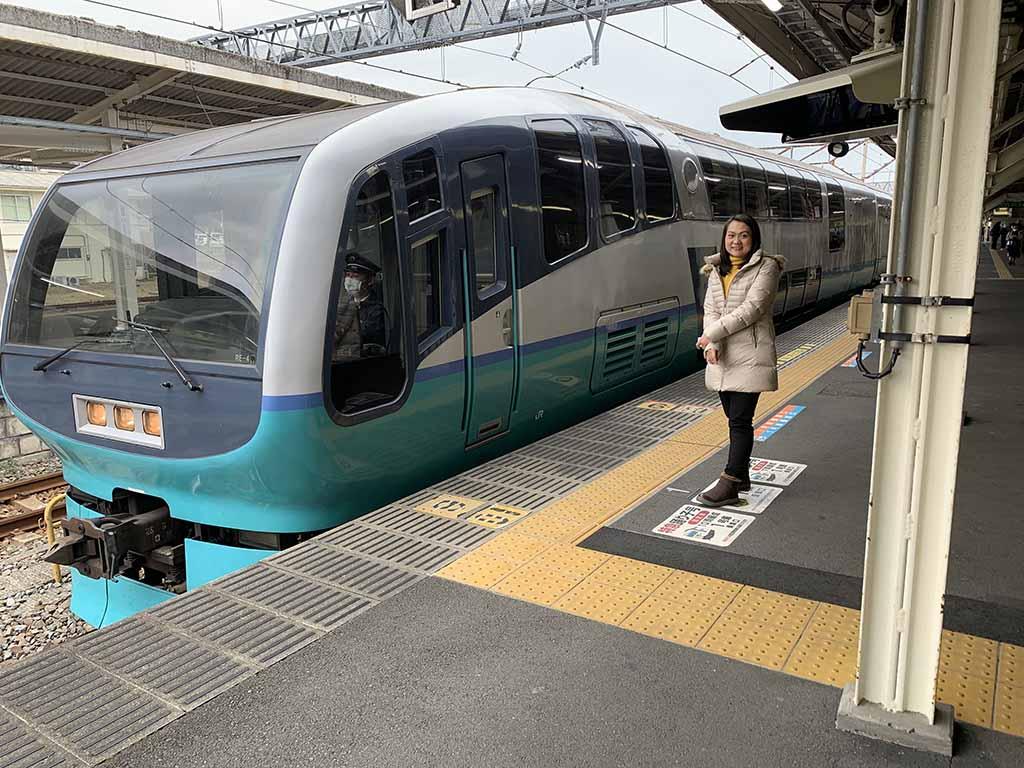 train-to-kawazu2