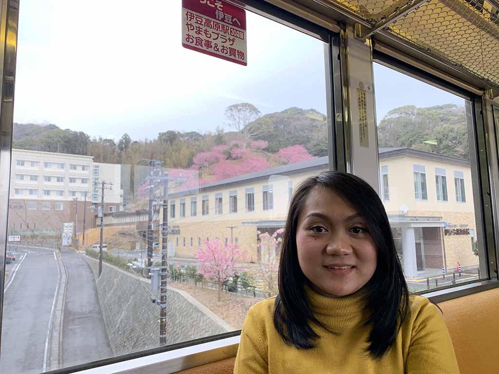 train-to-kawazu6